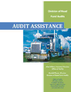 Audit Assistance Manual