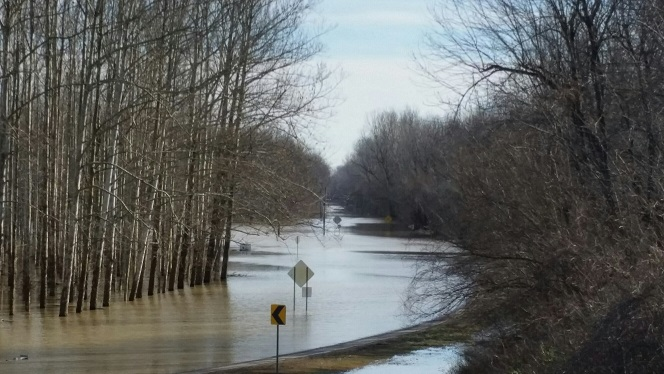 FEMA Creek.jpg